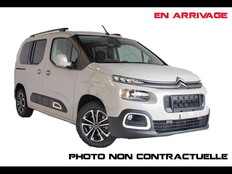 Citroen Berlingo M BlueHDi 130ch S&S Shine EAT8 Diesel SABLE Neuf à vendre